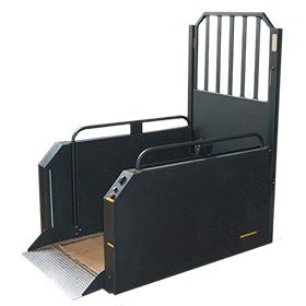 Picture of a steplift